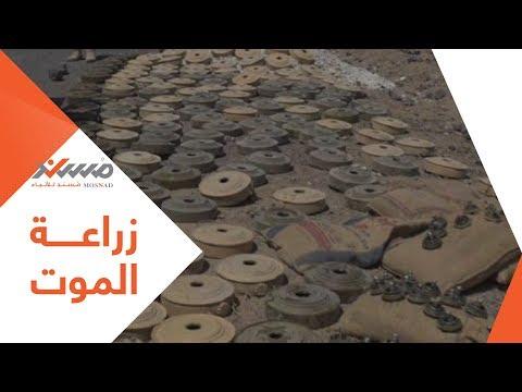 زراعة الموت في اليمن.. (فيديوجرافيك)