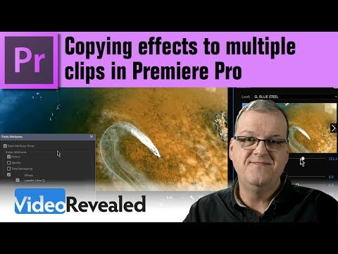Copying effects (Paste Attributes) to multiple frames in Premiere Pro