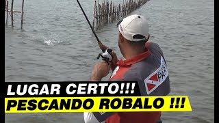 Dica Para Pesca Do Robalo.