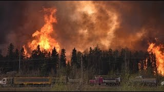 40-foot wall of flames: Alberta sees mass evacuations as wildfire rolls in