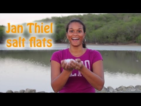 Curacao Jan Thiel Salt Flat