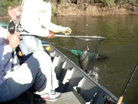 Viagem ao Xingu_kuluene 2010 Pescaria