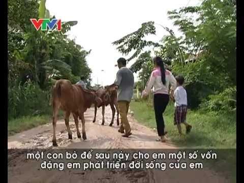 Tịnh Viện Vân Sơn và gia đình chị Hoài Anh-Hà Nội Tặng bò.mp4