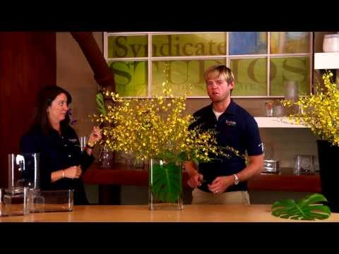 Create a Unique Floral Arrangement using just Two Ingredients!