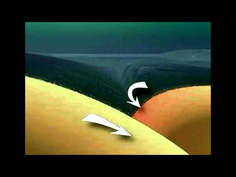 Animation of a Tsunami generated by an Earthquake