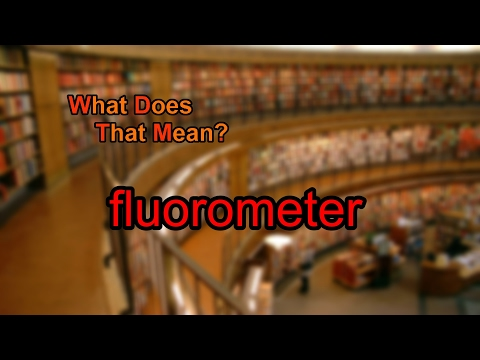 What does fluorometer mean?