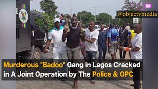 """A crack team of the joint Police Force and the Oodua People's Congress (OPC) has bursted hideout of the dreaded """"badoo"""" gang in Ikorodu area of Lagos, arresting more than 60 suspected members.Details in attached video."""