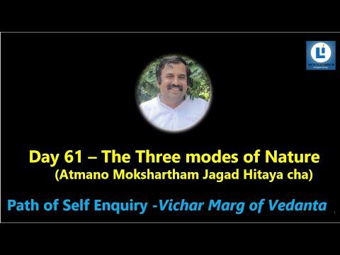 3 Mode of Nature D5 Workshop #atmadarshana #selfenquiry #vicharamarg #advaita
