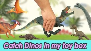 [EN] #49 Let's catch Dinosaurs in my toy box, kids education, CollectaㅣCoCosToy