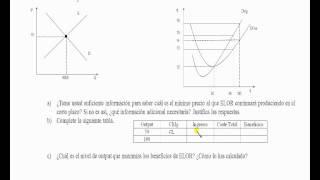 Umh1262 2012-13 Lec012 EJERCICIO 14 Y 15 Tema 6 Competencia Perfecta