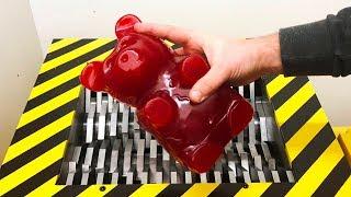 EXPERIMENT Shredding GIANT GUMMY BEAR (Five pound)