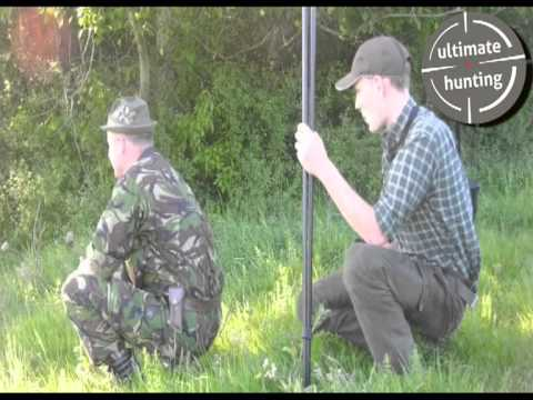Premiere hunting for roe bucks in Poland; bukke jagt i Poland