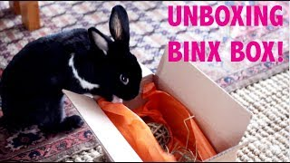 UNBOXING BINXBOX FOR RABBITS! by Lennon The Bunny