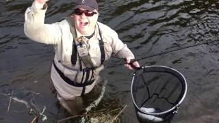 Magnificent Tweed Grayling - Tenkara in Scotland with Orvis Guide