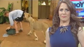 Video Best Animal News Bloopers Compilation 2018 MP3, 3GP, MP4, WEBM, AVI, FLV Januari 2019