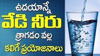 Video ఉదయాన్నే వేడి నీళ్ళు  త్రాగడం వెల్ల కలిగే ప్రయోజనాలు తెలుసా || Benefits of Drinking warm water daily MP3, 3GP, MP4, WEBM, AVI, FLV September 2018