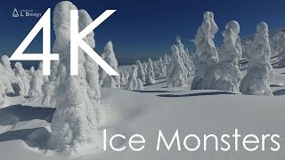 Ice Monsters / 空撮 樹氷 [4K]