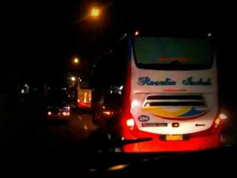 Shantika Scania Vs RosiN Scorpion King 278 & Raya