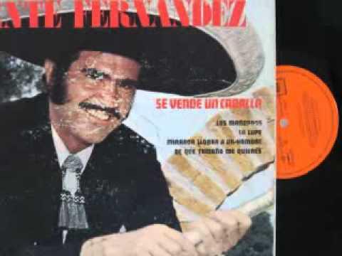 Vicente Fernandez-A Pesar De Todo