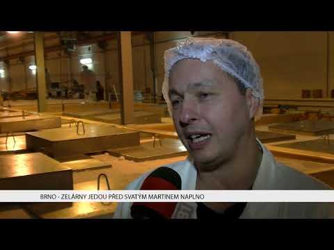 TV Brno 1: 10.11.2017 Zelárny jedou před svatým Martinem naplno