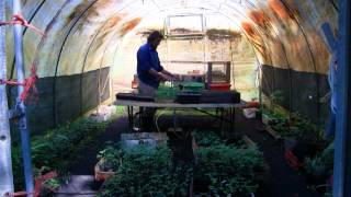Geoff Lawton's PRI Zaytuna Farm Tour - Apr/May 2012