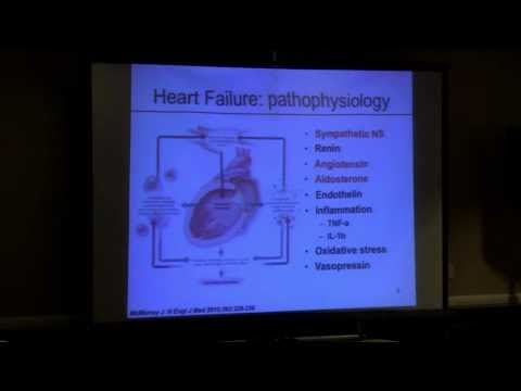 Managing Systolic vs. Diastolic Heart Failure in Stages A-D | Daniel Cruz, MD, PhD.