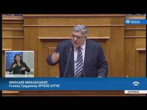 Ν.Μιχαλολιάκος(Γεν.Γραμ.Χρυ.Αυγής)(Ψήφος εμπιστοσύνης στην Κυβέρνηση)(10/05/2019)
