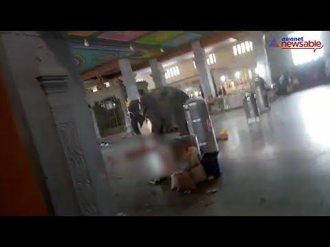 فيديو| في مشهدٍ مرعب .. فيل غاضب يدوس بقدميه رجلاً حتى الموت داخل معبدٍ هندوسي!