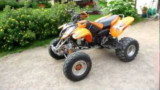 3. 2005 Polaris Predator 500 Troy Lee Special Edition