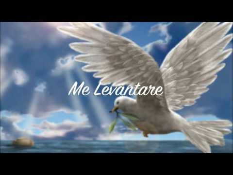 Me Levantare by Arleen Lopez