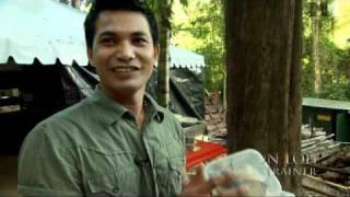 Nonton Dschungelkind | Featurette Insekten D (2011) Film Subtitle Indonesia Streaming Movie Download