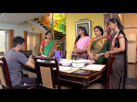 Video Priyamanaval Episode 331, 24/02/16 download in MP3, 3GP, MP4, WEBM, AVI, FLV January 2017