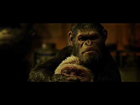 Caesar Kills Winter   Death Scene   War for the Planet of the Apes 2017   YouTube