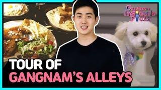 Tour of Gangnam's alleys (강남 골목길투어)