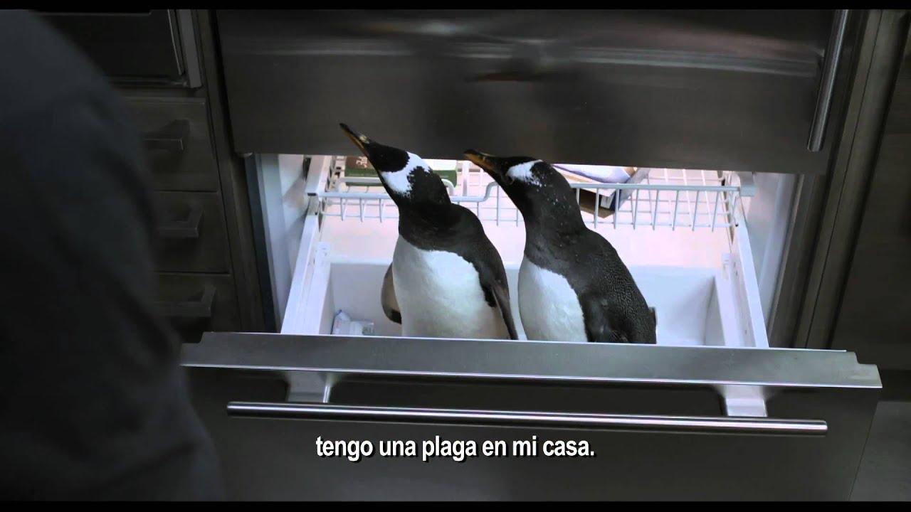 Movie Trailer:  Mr. Popper's Penguins (2011)
