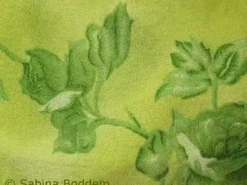 Die Farbe Grün Ihre Bedeutung Und Wirkung Interview Und
