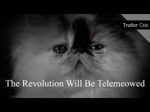 TRUTHER - Truther Cats asks one simple question: Are humans the top of the food chain or have animals just manipulated them into thinking so? In each video, our parano...