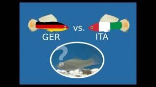 Deutschland vs. Italien - das große Fressen! ;-)