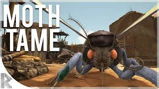 Moth/Lymantria & TREX Tame! - Ark Survival Evolved Scorched Earth DLC - Part 8 (Ark Scorched Earth)