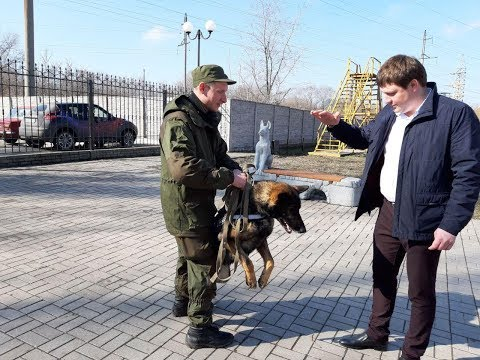 Набат – друг Почты Донбасса
