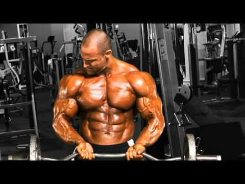 Chest Workout Muscle How To Gain Muscle Bodybuilding Program.mp4