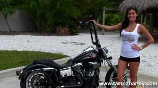 3. Used 2008 Harley-Davidson FXDL Dyna Lowrider for Sale  - Over $4,000 in Extras