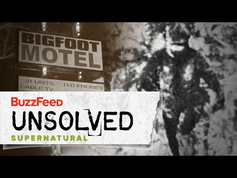 2 • E2___  _    Bigfoot: The Convincing Evidence