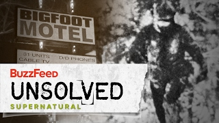 Video Bigfoot: The Convincing Evidence MP3, 3GP, MP4, WEBM, AVI, FLV Maret 2018