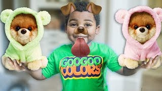 Video GOO GOO GAGA HAS A NEW DOG! LEARN TO SPELL DOG WITH GOO GOO COLORS PRETEND PLAY SKIT AND MORE download in MP3, 3GP, MP4, WEBM, AVI, FLV January 2017