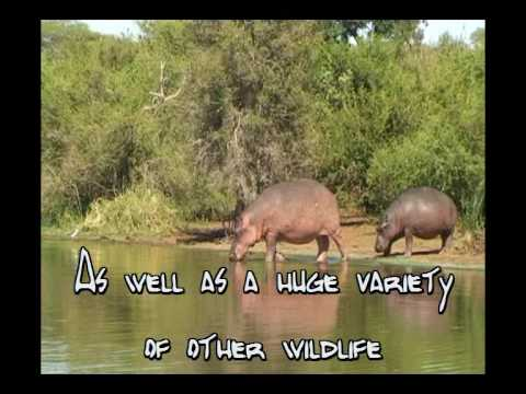 Video avKruger View Lodge for Backpackers