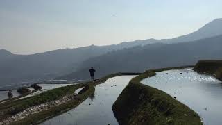 Honghe China  city pictures gallery : Hani Farmer, Honghe China