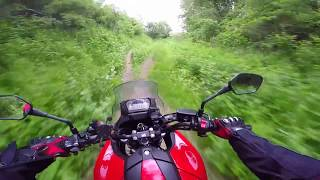 6. Into the Woods on a Honda nc700x
