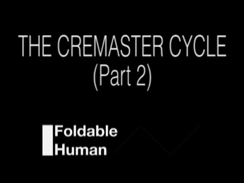 Folding Ideas - The Cremaster Cycle (Part 2 of 2)