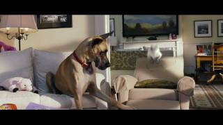 Nonton Marmaduke   In Theaters June 4    Official Trailer  Hd     20th Century Fox Film Subtitle Indonesia Streaming Movie Download